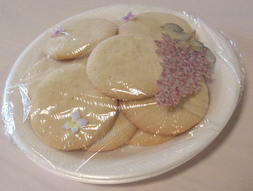 Sugar cookie image by Catherine Lambrecht
